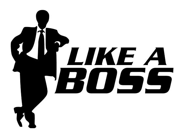 like_a_boss.png
